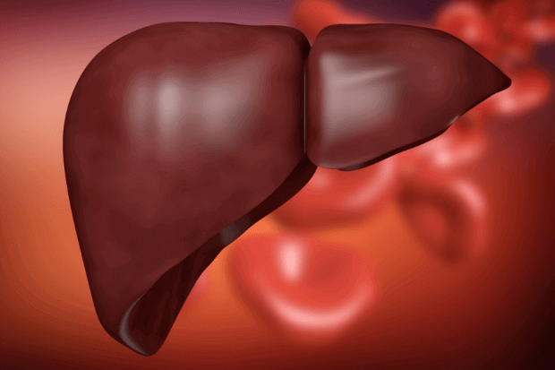 causes liver disease - Liver Disease – Symptoms and Causes