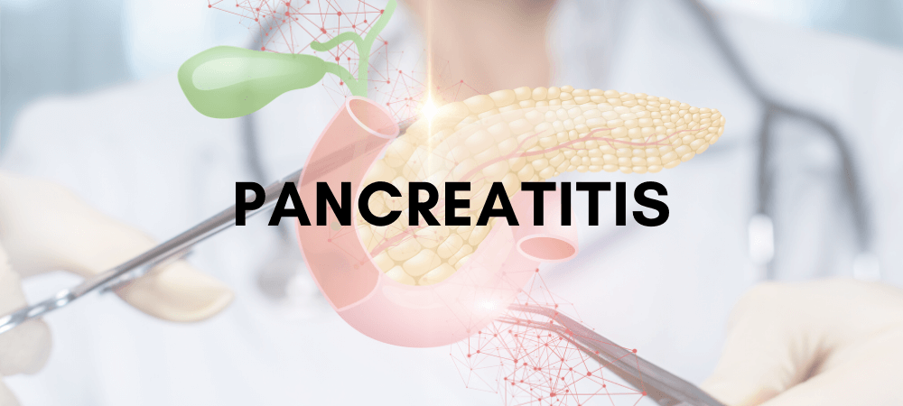 Pancreatitis: Symptoms, Triggers, Diagnosis & Treatment