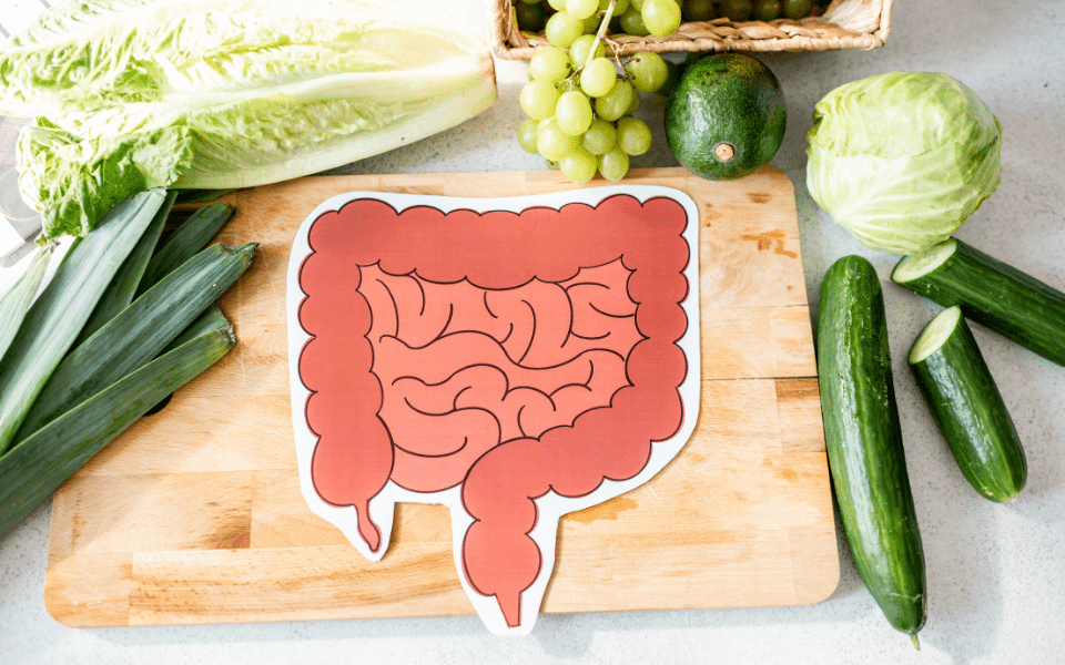 gut health improvements - Gut Health - What to Know and How to Improve It